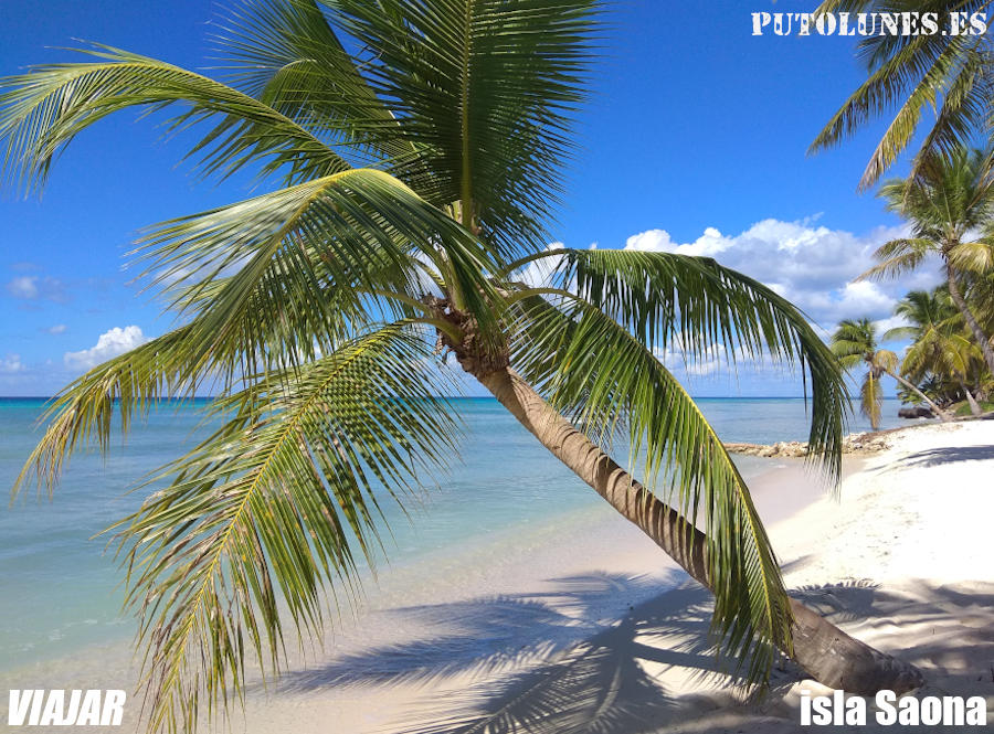 ¡Al Caribe! (isla Saona)