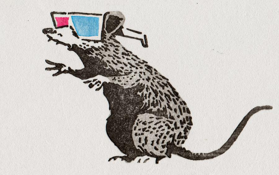 Rata con gafas 3D