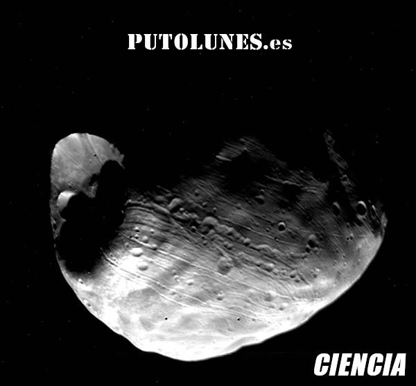 PUTOLUNES.es | CIENCIA