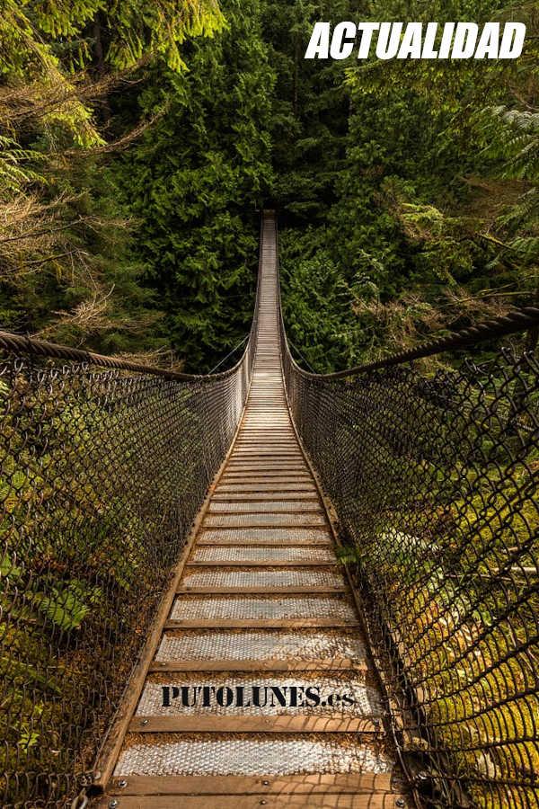 PUTOLUNES.es | Actualidad - puente en Canadá.